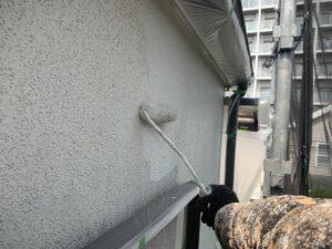 大阪市 戸建て 外壁塗装 カビ取り 防カビ ダイタク DAITAKU